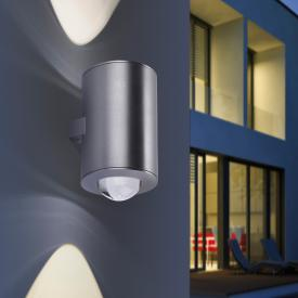 Paul Neuhaus Q-Sascha RGBW LED wall light with dimmer