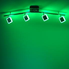 Paul Neuhaus Q-Vidal RGBW LED ceiling light with dimmer, 4 heads, adjustable