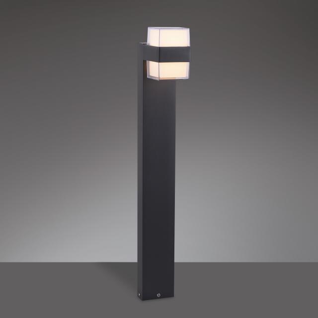 Paul Neuhaus Cara LED bollard light