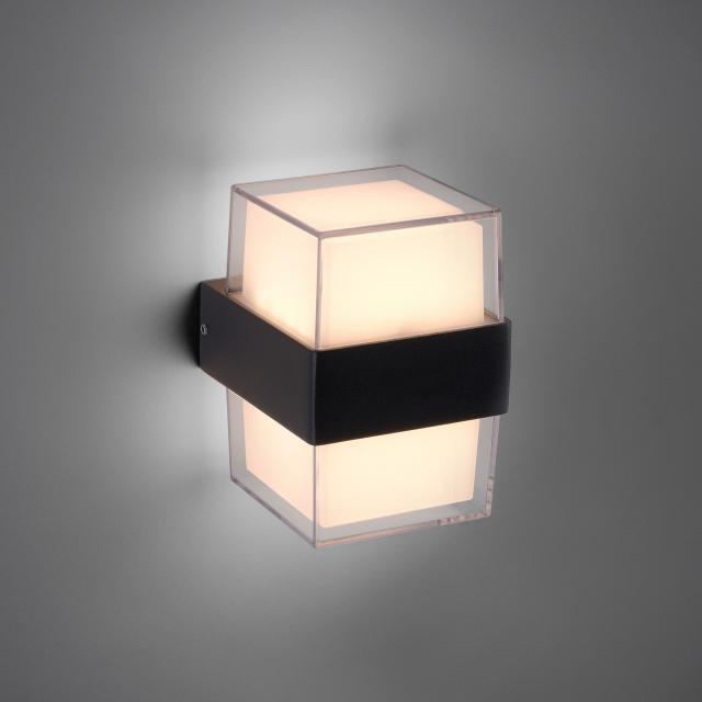 Paul Neuhaus Cara LED wall light