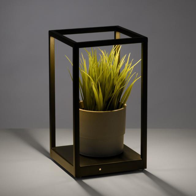Paul Neuhaus Contura LED table lamp with dimmer