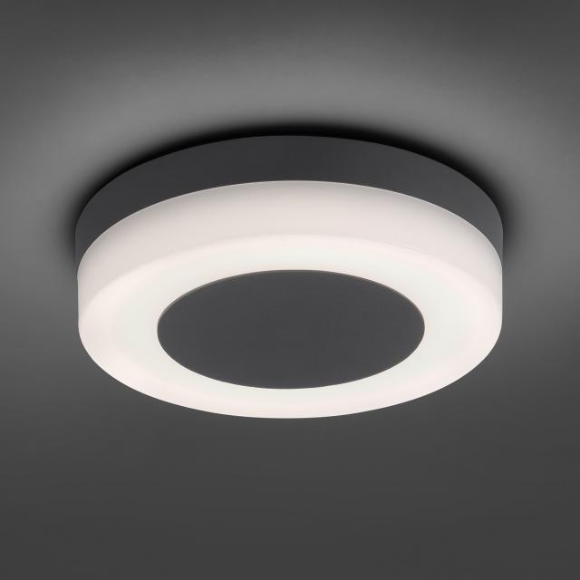 Paul Neuhaus Fabian LED ceiling light/wall light