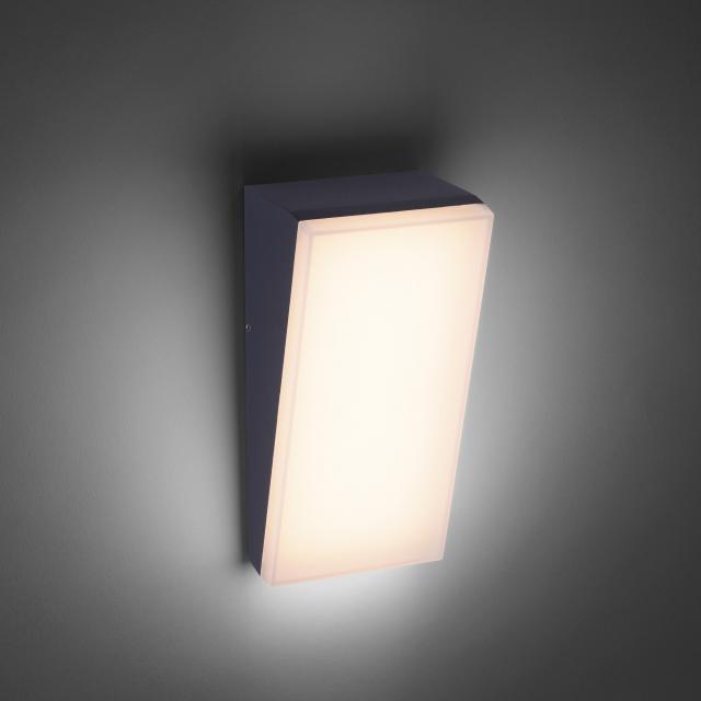 Paul Neuhaus Gwen LED wall light