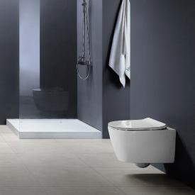 PREMIUM 100 wall-mounted washdown toilet, rimless, oval