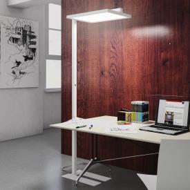 Schmitz Paro LED floor lamp with dimmer