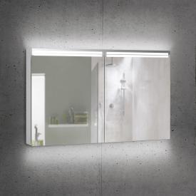 Schneider ARANGALINE mirror cabinet with 2 doors silver anodised