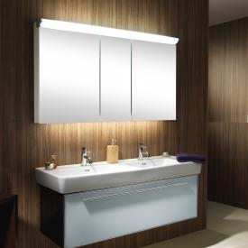 Schneider FACELINE mirror cabinet with LED lighting silver anodised