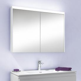 Schneider O-Line mounted & recessed mirror cabinet with LED lighting, 2 doors