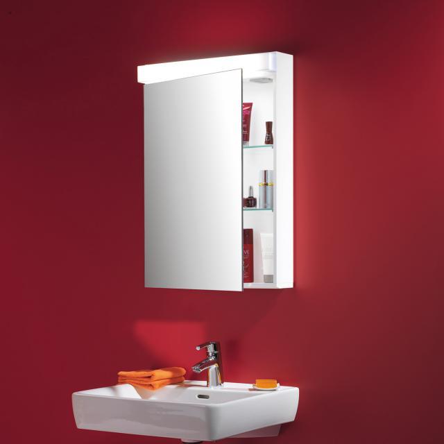 Schneider LOWLINE FL mirror cabinet with lighting, with 1 door