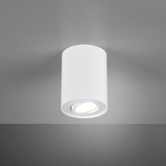 TRIO Cookie Spot/ceiling light, 1 head