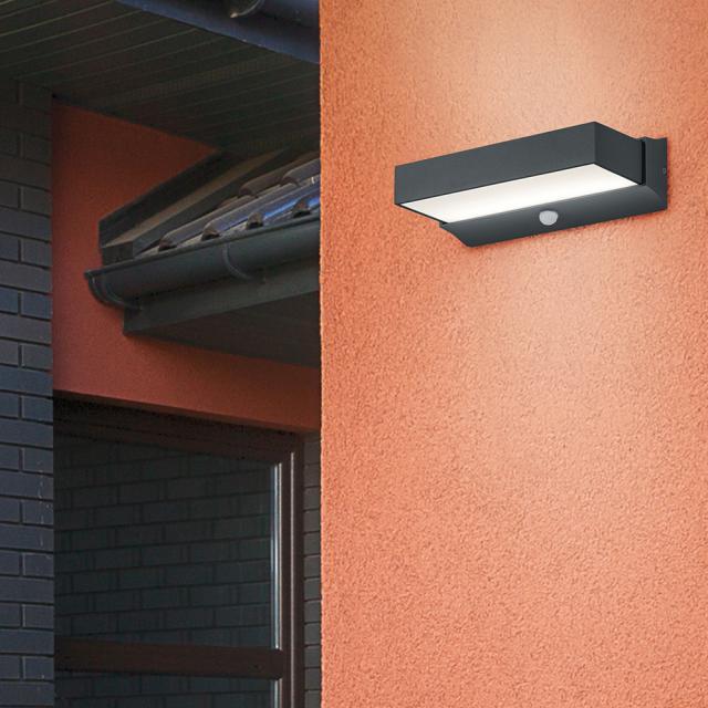 TRIO Cuando LED wall light with motion sensor