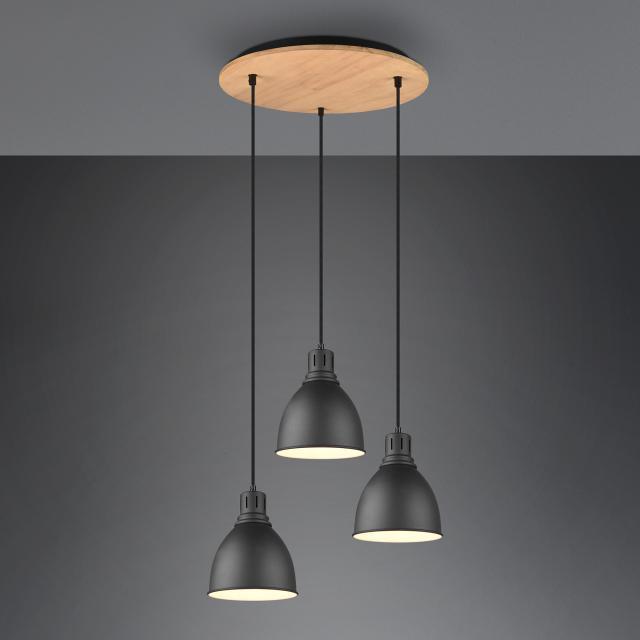 TRIO Henley pendant light, round