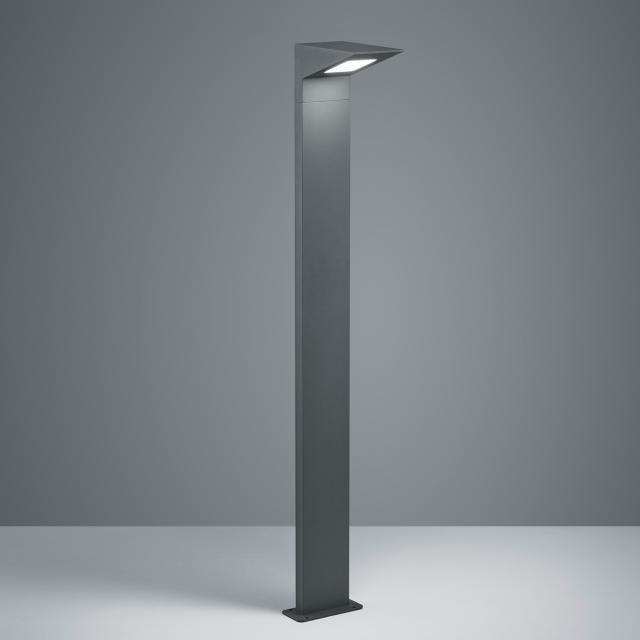 TRIO Nelson LED bollard light