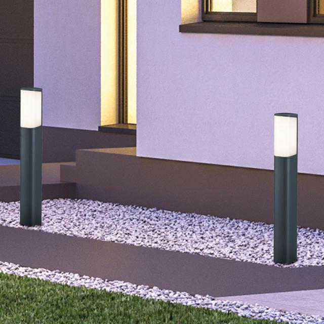 TRIO Ticino LED bollard light