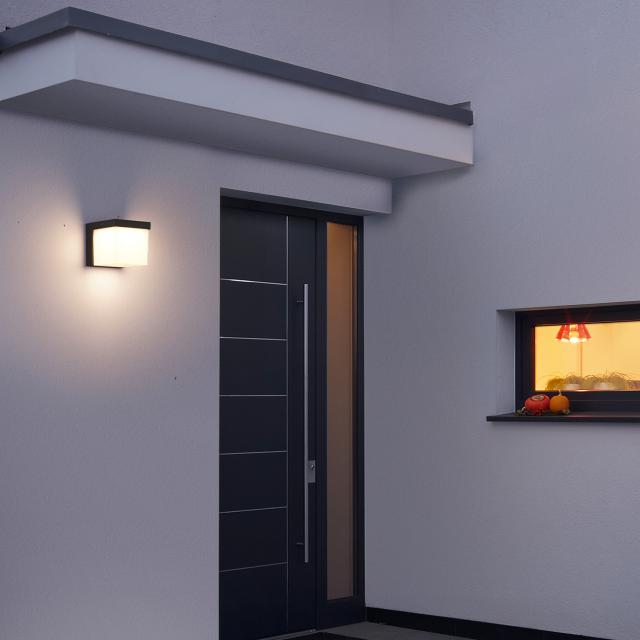 TRIO Yangtze LED wall light