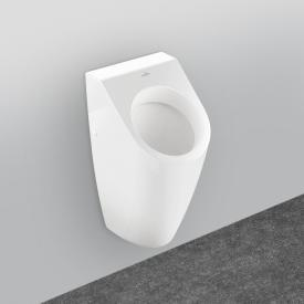 Villeroy & Boch Architectura siphonic urinal with target white