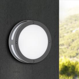 Wofi Astoria LED ceiling light/wall light